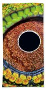 Eye Dragon Forest Beach Towel