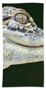 Eye Of The Alligator Beach Towel