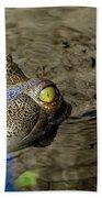 Eye Of The Crocodile Beach Towel