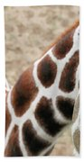 Eye Of The Giraffe. Beach Towel