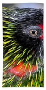 Eye Of The Tropics Beach Towel