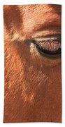 Eyelashes - Horse Close Up Beach Towel