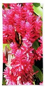 F10 Red Ginger Beach Towel