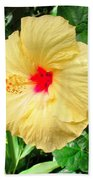 F12 Yellow Hibiscus Beach Sheet