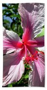 F17 Pink Hibiscus Beach Sheet