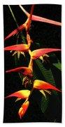 F19 Heliconia Flowers Hawaii Beach Towel