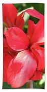 F22 Cannas Flower Beach Sheet