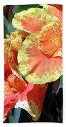 F24 Cannas Flower Beach Sheet