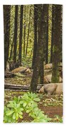 Faces In The Woods Beach Towel