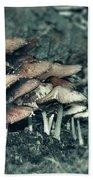 Faded Mushrooms Parade  Beach Towel