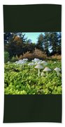 Fairytail Mushrooms Beach Towel