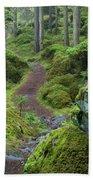 Fairytale Trail Beach Towel