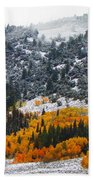 Fall And Winter Collide  Beach Towel