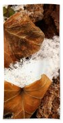 Fall And Winter Beach Towel