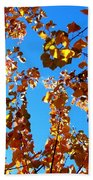 Fall Apricot Leaves Beach Towel