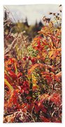 Fall Around  Beach Towel