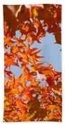 Fall Art Prints Orange Autumn Leaves Baslee Troutman Beach Towel