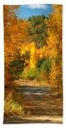 Fall Aspen Trail Beach Towel