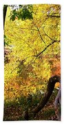 Fall At Lincoln Lake	 Beach Towel