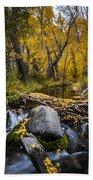 Fall At Mcgee Creek Beach Towel