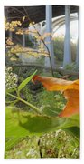 Fall At The River Beach Towel