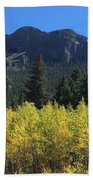 Fall At Twin Sisters Beach Towel