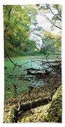 Fall By A River Beach Towel