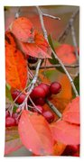 Fall Color 1 Beach Towel