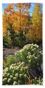 Fall Color Comes To Dillon Reservoir Beach Towel