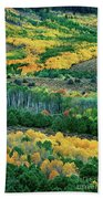 Fall Color In The Eastern Sierras California Beach Towel