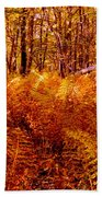 Fall Color In The Woods Beach Towel