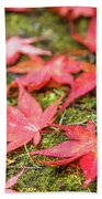 Fall Color Maple Leaves At The Forest In Nikko, Tochigi, Japan Beach Towel