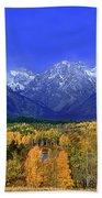 Fall Colored Aspens Grand Tetons Np Beach Towel