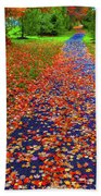 Fall Colors 2014-#15 Beach Towel