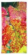 Fall Colors At The Vineyard Beach Towel