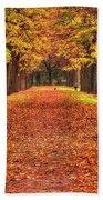 Fall Colors Avenue Beach Towel