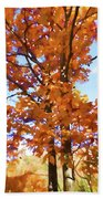 Fall Colors Looking Awesome Beach Towel