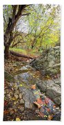Fall Creek View Beach Towel