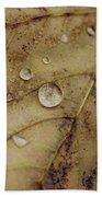 Fall Droplets Beach Towel