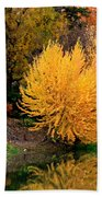 Fall Fireworks Beach Towel