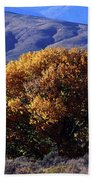 Fall Foliage And Hills, Carson City Beach Towel
