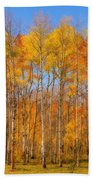 Fall Foliage Color Vertical Image Orton Beach Towel