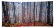 Fall Forest In Fog Beach Towel