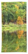 Fall Forest Reflection Beach Towel
