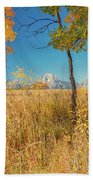 Fall From Oxbow Bend In Grand Tetons Beach Towel