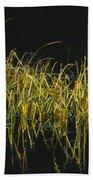 Fall Grasses - Snake River Beach Towel