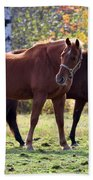 Horses Fall Grazing Beach Towel