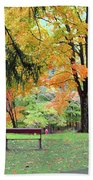 Fall In Brown County Beach Towel