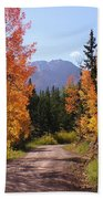 Fall In Colorado Beach Towel
