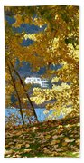 Fall In Kaloya Park 3 Beach Towel